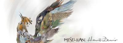 MESELHAN AFİS site